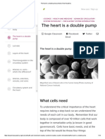 The Heart is a Double Pump (Article)