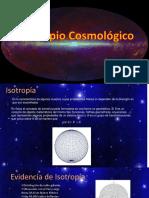 Principio Cosmológico