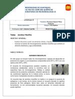 Informe 2 de Microbiologia