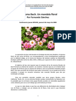 ConfeSEFLORElSistemaBach08052008.pdf