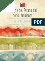 articles-52016_resumen_ejecutivo2011.pdf