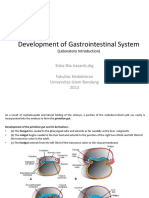 Development of Gastrointestinal System.pptx