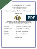 Informe de Practicas Pre Profesionales Facultad de Ingeniería Metalúrgica UNT