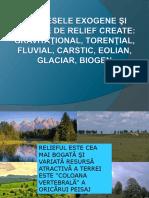 74608992 Relieful Creat de Fortele Exogene