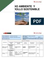 Medio ambiente y desarrollo sostenible OK  .docx