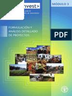 Formulación y Analisis Detallado de Proyectos