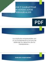 Objetivos y Garantias de Los Sindicatos Empresariales