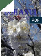 Lohanul_Nr_41.pdf