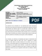 Informe de Vitamminas y Minerales