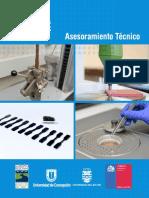 asesoramiento_técnico_2.pdf-1273827887.pdf