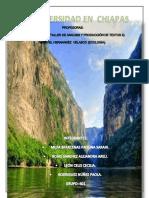 601-Biodiversidad en Chiapas-blog (1)