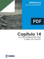 Capitulo 14 La Neutralizacion Del Cuero Al Cromo