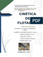 283888998 Cinetica de Flotacion