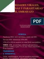 16 Enfermedadesviralesautoguardado 100727220230 Phpapp01