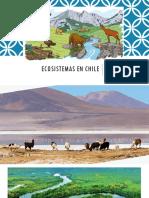 Ecosistemas en chile.pptx