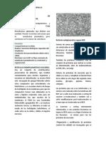 Retículo Endoplasmatico Liso REL