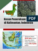 Kesan Penerokaan Hutan Di Kalimantan, Indonesia