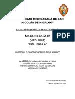 2. Resumen Influenza A