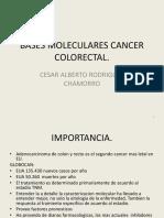 BASES MOLECULARES CA COLON.pptx