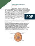 Compuestos Quimicos de La Celula