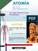 1 Clase Anatomía