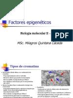 4. Factores epigeneticos
