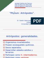 14 Artropodos.pdf