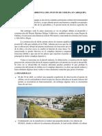 Impacto Ambiental Del Puente de Chilina