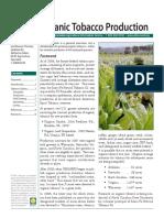 Organic-Tobacco-Production.pdf