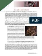 THE-SADDLE-RIDGE-HOARD.pdf