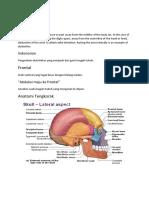 temporomandibular