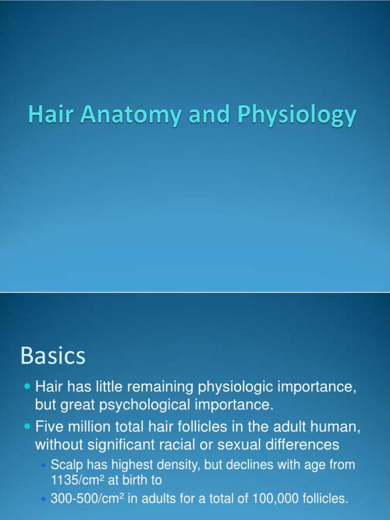 Hair | Epidermis | Hair