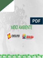 arborizacao1.pdf