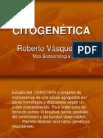 citogenticarev-150606023230-lva1-app6892