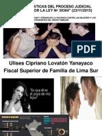 Presentación Dr. Ulises Lovaton VALE PONENCIA LEY 30364 CAL 14-10-16 (1)