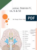 Cranial Nerves v, Ix, x, Xi