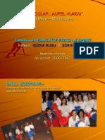 Copy of Raport de Activitate 2006 2007