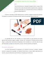 Conceptos básicos de maquillaje.pdf