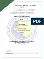 Elementales-Campo Pungarayacu.docx