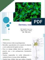 Sis Nervioso I-Características neurona y glia.pptx