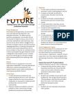 summary brief - meet my future
