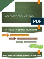 LOS PANTANOS DE VILLA.pptx