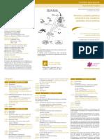 P0579 - FAM_VIDA - Curso de formación Agentes Pastoral Familia y Vida 2017_AFINT (2)
