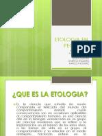 Etologia en Peces