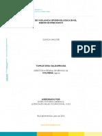Clinica San Jose Sve Biomecanico (1)