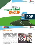 Seguridad Vial PSE VFinal 28 04