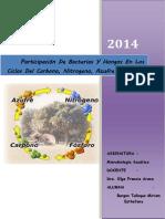 Desarrollo de Bacterias y Hongos en Ambientes Acuáticos,,,
