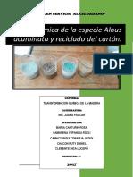 Pasta química del Alnus acuminata y reciclado de cartón