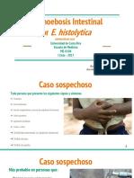 Entamoebosis Intestinal Por E Histolytica