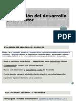 Evaluacindeldpm 151030023929 Lva1 App6892